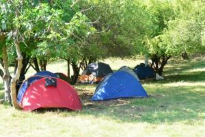iscr georgia caucasus rustavi camping